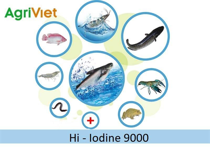 iodine 3